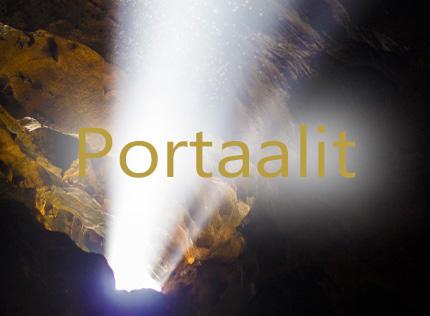 Portaalit